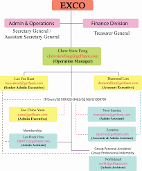 personal finance chart chart of accounts for personal finance new gelfaam documents ideas