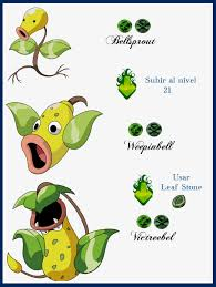 Bellsprout Evolution Chart