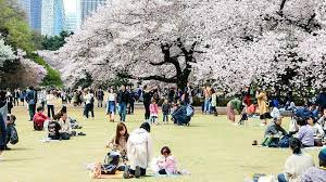 shinjuku gyoen is comprised of three diffe types of gardens