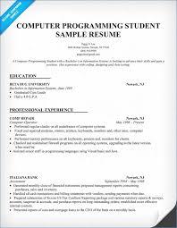 Computer Programmer Resume Resume Layout Com