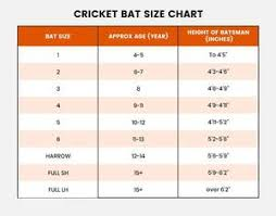 Cricket Product Reviews And News Cricket Best Buy