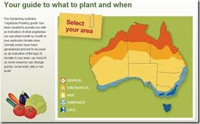 Vegetable Growing Guide For Australia Little Farm In The City