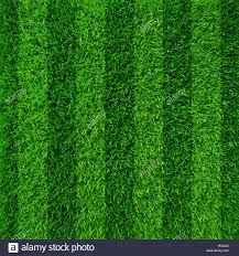 green grass soccer field. Green Grass Soccer Field Background D
