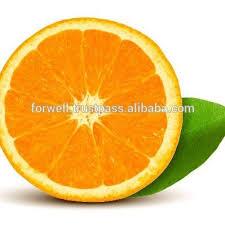 orange fruit names. Fine Names Yellow Orange Fruitnames Of Fruits  Buy 100 Super OrangeOrange  Navel U0026 ValenciaHot Fresh Sale In Egypt Product On Alibabacom Fruit Names A