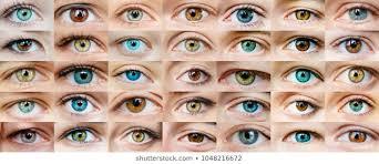 Pics Of Eyes Eye Images Stock Photos Vectors Shutterstock