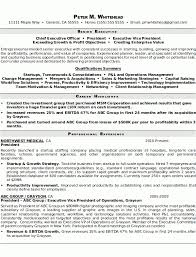 Resume Sample 8 Senior Executive Resume Career Resumes Inside Senior