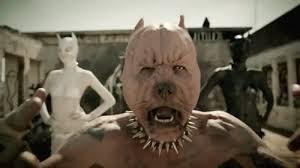 pitbull terrier die antwoord. Simple Terrier Music Video Pitbull GIF On Terrier Die Antwoord O