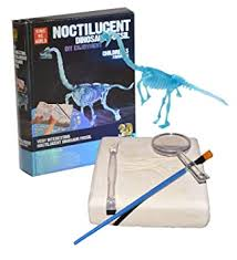 Buy Vibgyor Vibes Glow in Dark Noctilucent <b>Dinosaur</b> Fossil ...