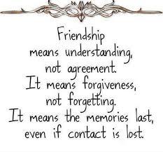 Friendship Means Understanding Freunde Sprüche Freundschaft