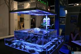 fish tank lighting ideas. The Ideas Chosen Doesn\u0027t Have To Be Complicated Or Expensive It\u0027s Good Source For Items That Can Used Design Fish Tanks Fits Your Budget Well. Tank Lighting K
