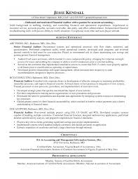 Resume Internal Auditor Sample Audit Objectives Examples Senior