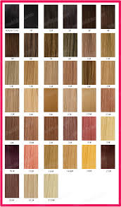 Color Chart Brazilian Virgin Hair Weave Clip In Hair