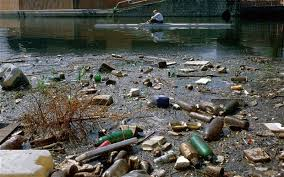 Image result for river creatures and pollution