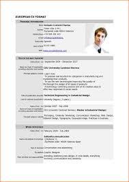 Pdf Format Resume Example Sidemcicek Com