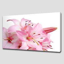sweet pink lily large floral canvas wall art pictures prints home decor beautifull wallpaper elegance furniture  on flower wall art prints with wall art top ten gallery floral canvas wall art floral canvas