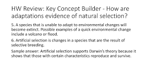 The purpose of the post is to show the big differences between artificial selection and natural selection, because neo darwinists go on trying to conflate the two. Butterfly Camouflage Simulation Ppt Download