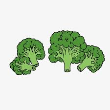 broccoli clipart. Delighful Broccoli Svg Library Broccoli Clipart Cartoon Hand Painted Png Handpainted Intended Clipart G