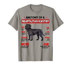 Neapolitan Mastiff Size Chart Amazon Com Anatomy Of A Neapolitan Mastiff Dog T Shirt Dog