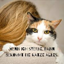 Posts Tagged As Katzenspruch Picdeer