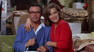 Image result for good neighbor sam 1964