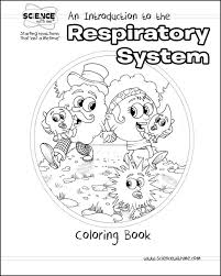 Array respiratory system worksheets for kids the best worksheets image rh bookmarkurl info