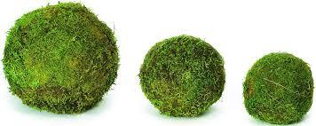 Decorator Balls Unique Decorative Moss Balls Moss Balls for Sale Sheet Moss Balls
