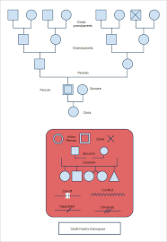 template for genogram in word 40 genogram templates pdf doc psd free premium templates