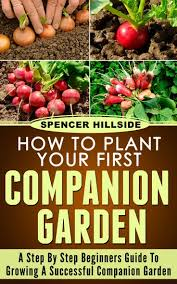 Stephanie Alexander Kitchen Garden Companion 17 Best Images About Garden Companion Planting On Pinterest