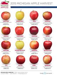 Apple Variety Chart 2015 Michigan Apple Harvest Dates Michiganapples Com In