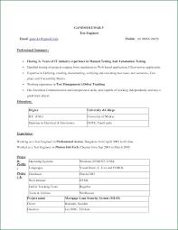 Best Resume format Download In Ms Word 2007 Best Of normal Resume format  Doc Resume Ixiplay Free Resume Samples