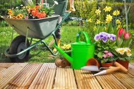 Small Picture DIY Garden Designer