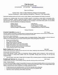 18 Executive Resume Template Free Lodelingcom