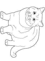 Small Picture Cats coloring pages British Shorthair Cats Kids printables