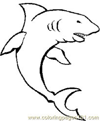 Small Picture Shark Coloring Page 02 Coloring Page Free Shark Coloring Pages