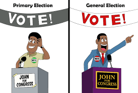 Primary vs General Election - Campaign Types and Strategy - Numero Blog