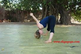 e and join diyayoga for a 200 hours hatha yoga teacher course in goa india on april 2017