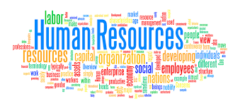 Image result for human resource images