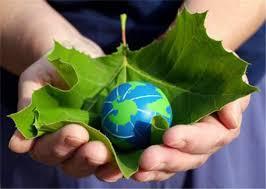 Resultado de imagen para responsabilidad ambiental