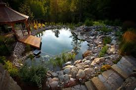 natural looking in ground pools. Traditional Pool By Genus Loci Ecological Landscapes Inc. Natural Looking In Ground Pools G