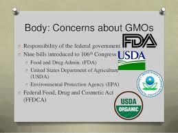 Gmo persuasive speech Samk SlideShare     health consequences     Body  Concerns about GMOs O Responsibility of the federal government