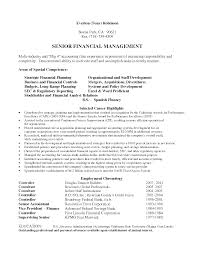 Big Four Resume Example