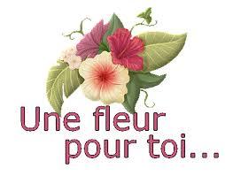 """Résultat de recherche d'images pour """"fleur pour ma copine"""""""