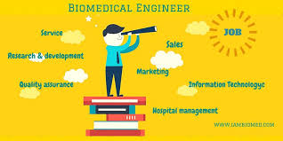 Biomedical Engineering Job Description Enchanting Why Do Biomedical Engineers Struggle To Find A Job
