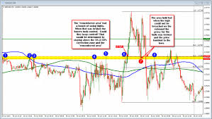 Forex Education How To Protect Your Account Balance From