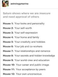 Career Birth Chart Saturn In The Houses Natal Saturn In Sagittarius 2nd House