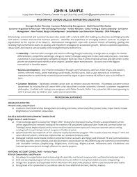 It Director Resume Samples – Foodcity.me
