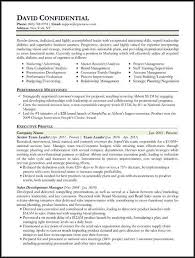 Executive Level Resume Templates Resume Sample