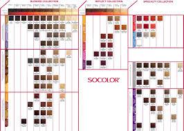 Pravana Color Swatch Chart Hair Color Swatch Book Redken Online Matrix Tigi Wella