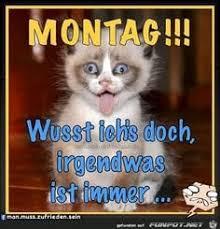 Lustige Guten Morgen Sprüche Montag Abcpics