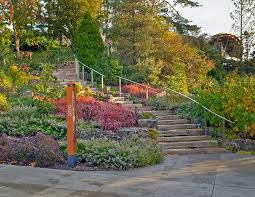 the new rock garden offers a fresh and